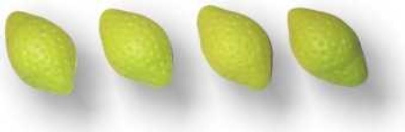 Decor-Zitronen aus Marzipan