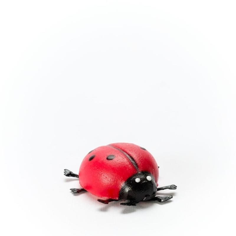 Glückskäfer 25g