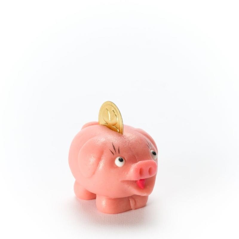 Sparschweinchen 50g